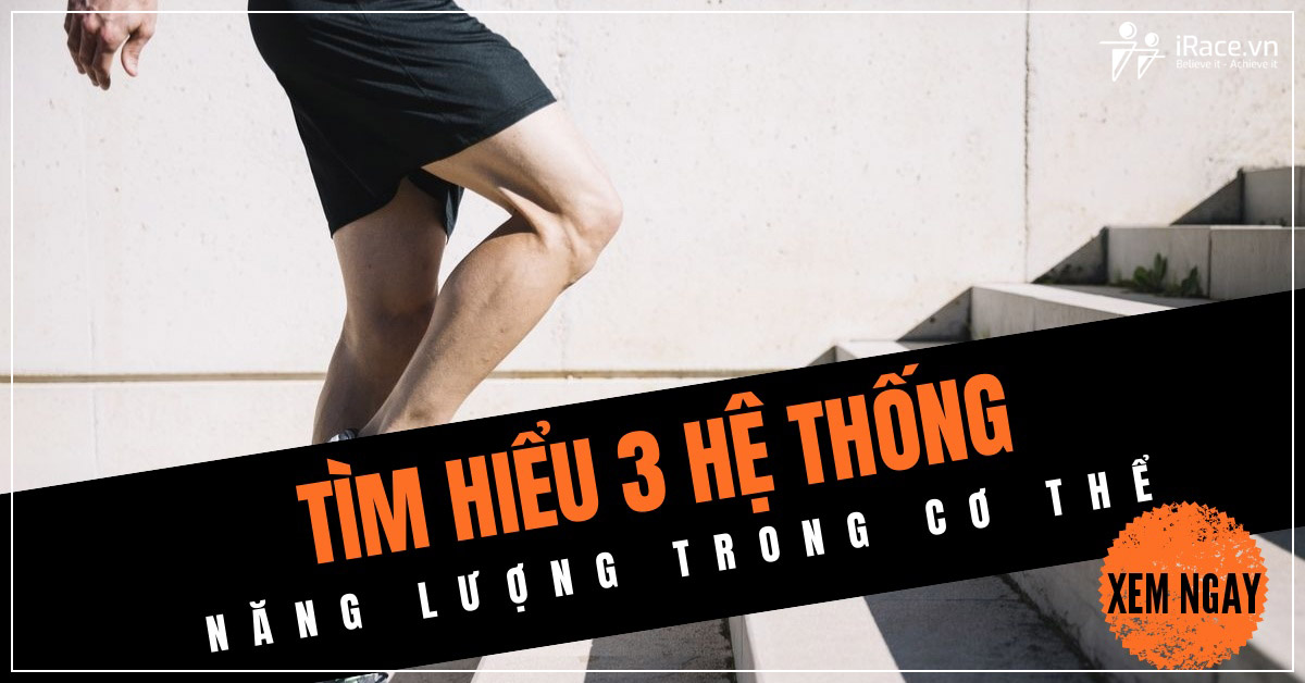 3 he thong nang luong trong co the
