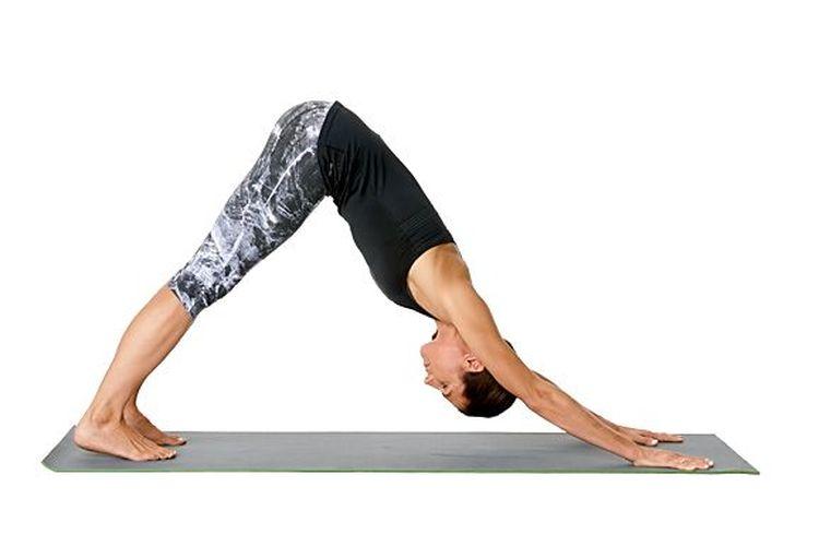 down ward dog yoga