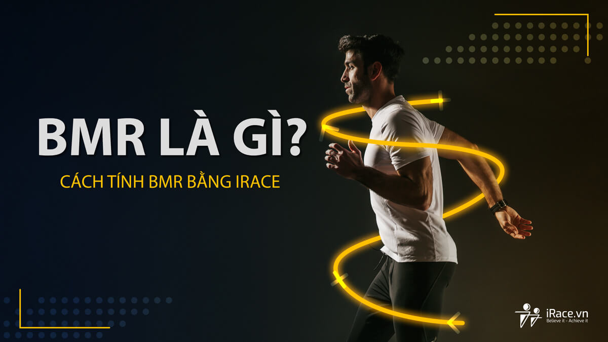 BMR là gì ? Cách tính BMR tự động trên iRace.vn
