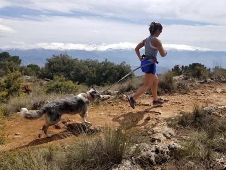 run with dog